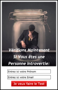 Introversion : TEST
